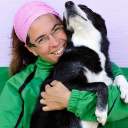 Online Dog Training Webinars