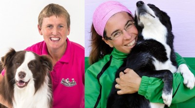 Online Dog Training Webinars
